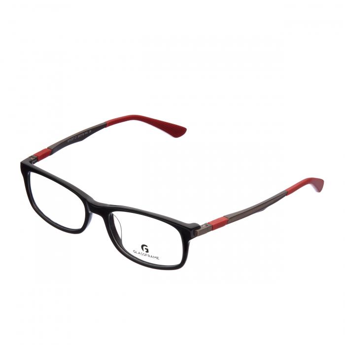 Rama ochelari adulti Glassframe Prestige [1]