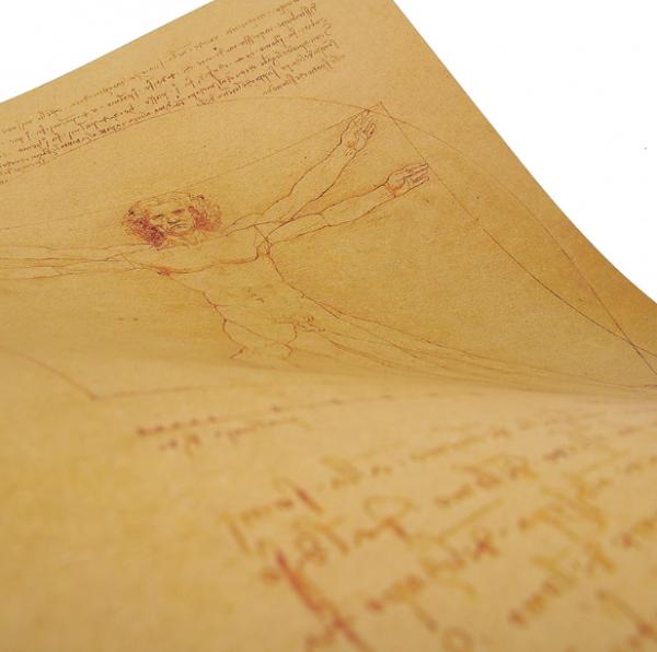 Poster roluit din hartie, GMO, Leonardo Da Vinci 3