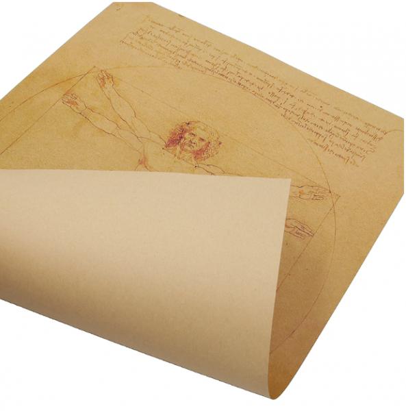 Poster roluit din hartie, GMO, Leonardo Da Vinci 4