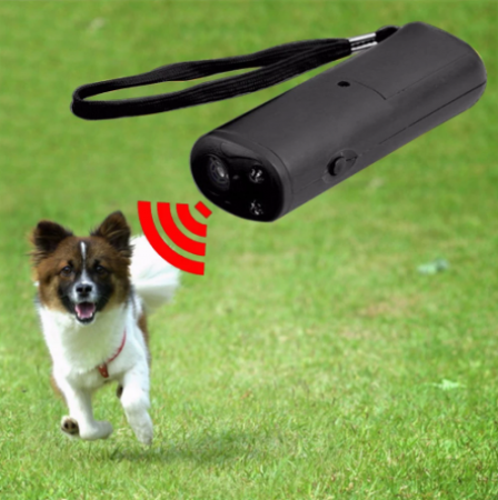 Aparat cu ultrasunete pentru animale, GMO, Dog Marsh3