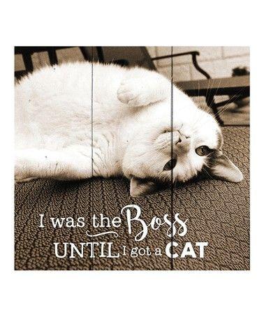 I was the boss until I got a cat [0]