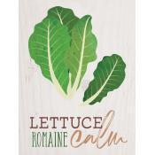 Lettuce remain calm [0]