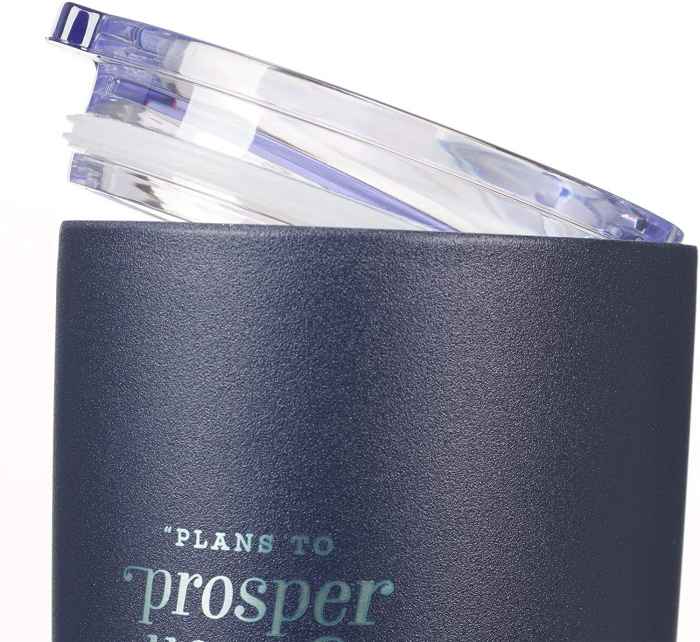 Plans to prosper you [2]