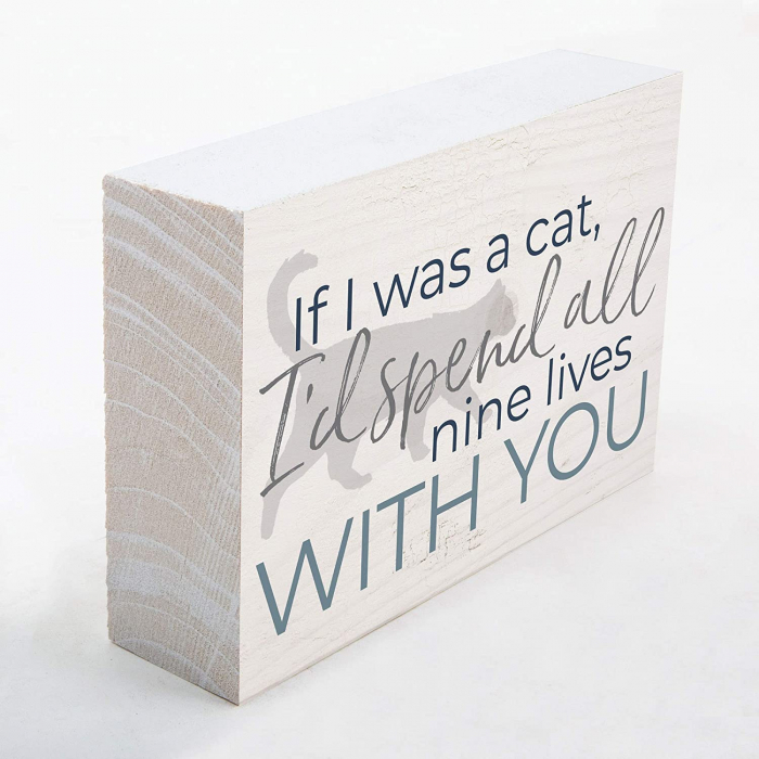 If I was a cat I'd spend all nine lives [2]