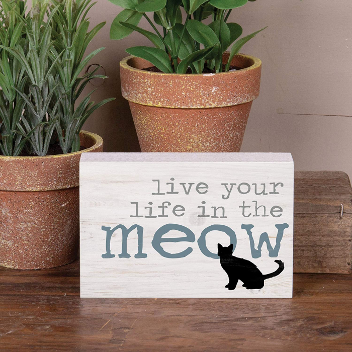 Live you life in the meow [0]
