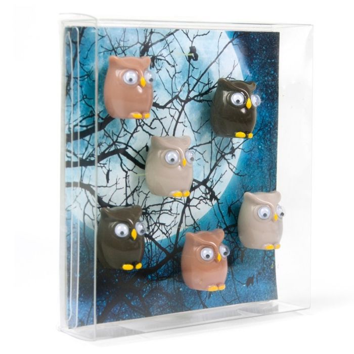 Magnet - OWL (6 buc/set) 1