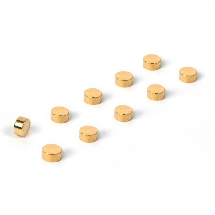 Magnet - STEELY GOLD (10 buc/set) 0