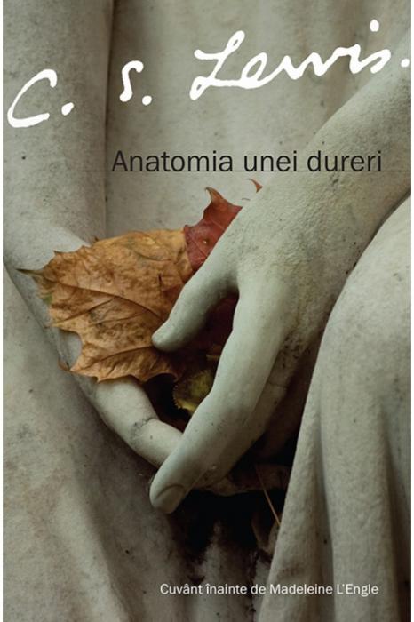 Anatomia unei dureri 0