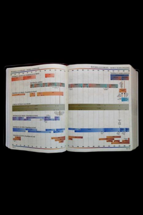 Biblia internationala de studiu inductiv 5