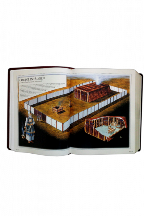 Biblia internationala de studiu inductiv 9