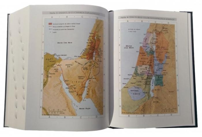 Biblia de studiu pentru o viata deplina (editie deLuxe, piele ecologica, roz & maro) 1