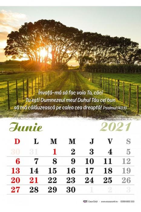 Calendar de perete 2021 - format A4 2
