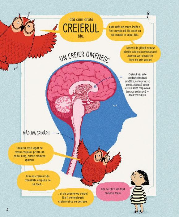 Cum functioneaza creierul uman (Usborne) [3]
