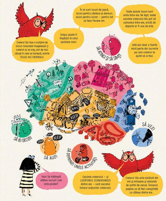 Cum functioneaza creierul uman (Usborne) [4]