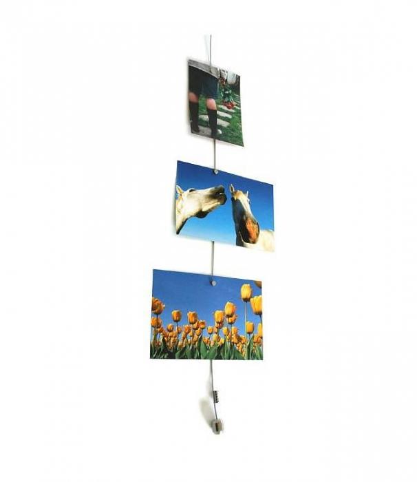 Display Foto Magnetic Steely Dan 200 cu 15 magneti 3