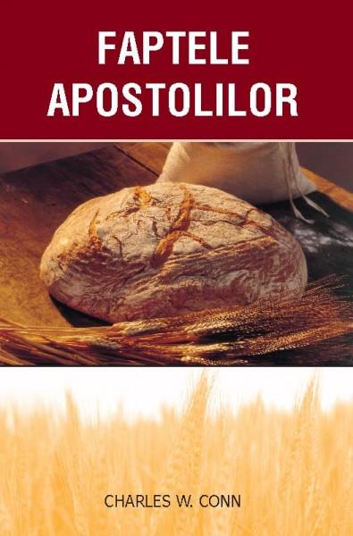 Faptele apostolilor [0]