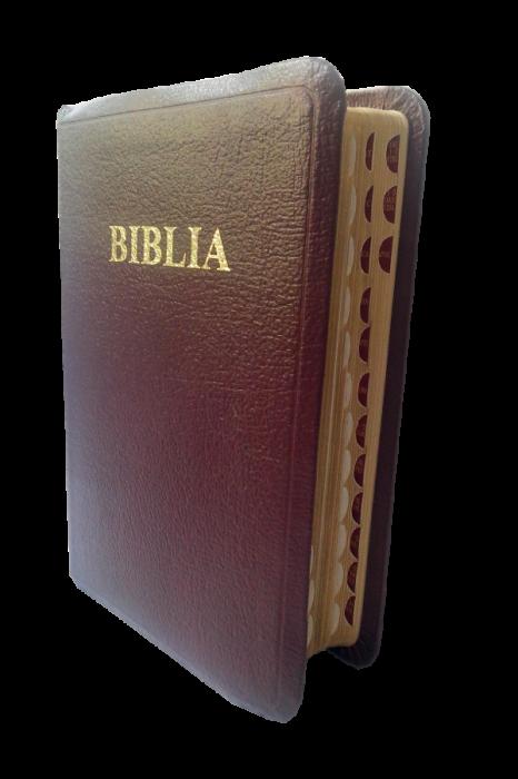Biblie mica de lux, fara fermoar, cu margini aurii si index de cautare, VISINIE [1]