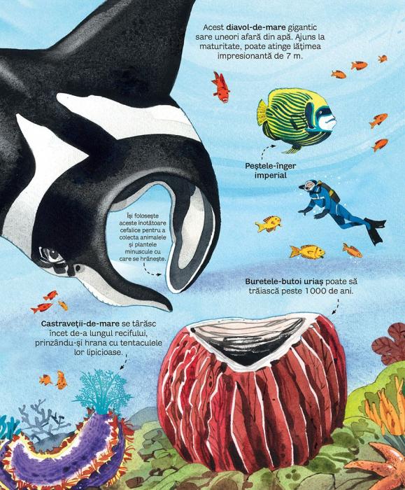 Marea carte a animalelor din mari si oceane (Usborne) [3]
