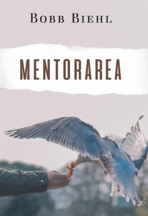 Mentorarea. Cum sa gasesti un mentor si cum sa devii unul 0