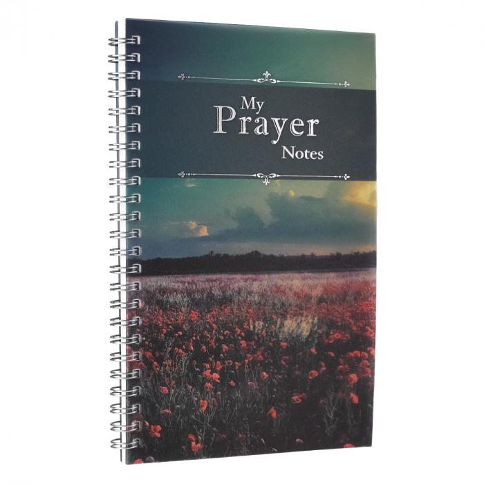 My Prayer notes - 52 weeks [3]
