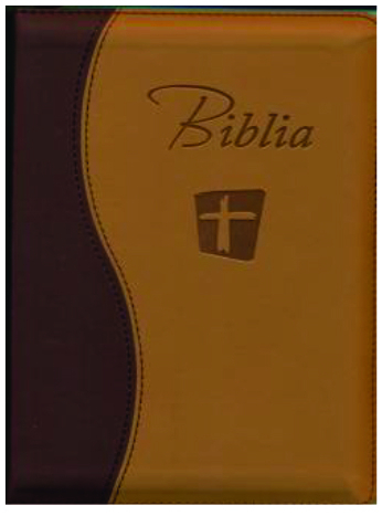 Biblia Noua Traducere Romaneasca - NTR maro-crem [0]