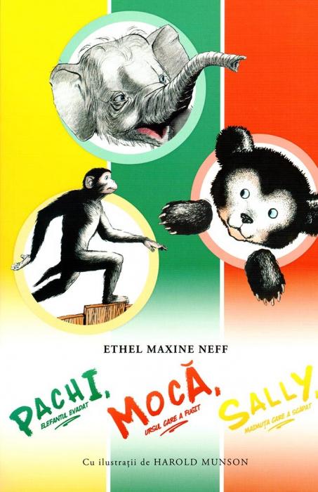 Pachi, elefantul evadat; Moca, ursul care a fugit; Sally, maimuta care a scapat 0