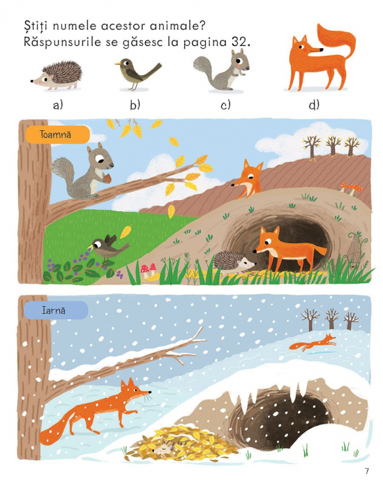 Prima mea carte despre natura (Usborne) [4]