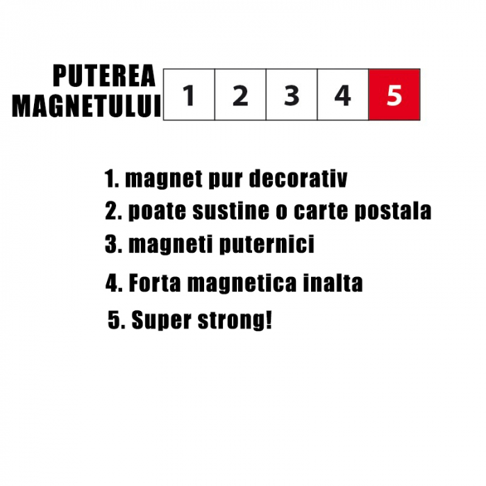 Carlig magnetic SOLID (4 buc/set) 2