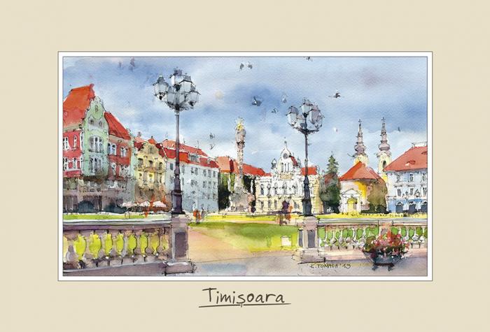 Tablou mic Timisoara 1 0