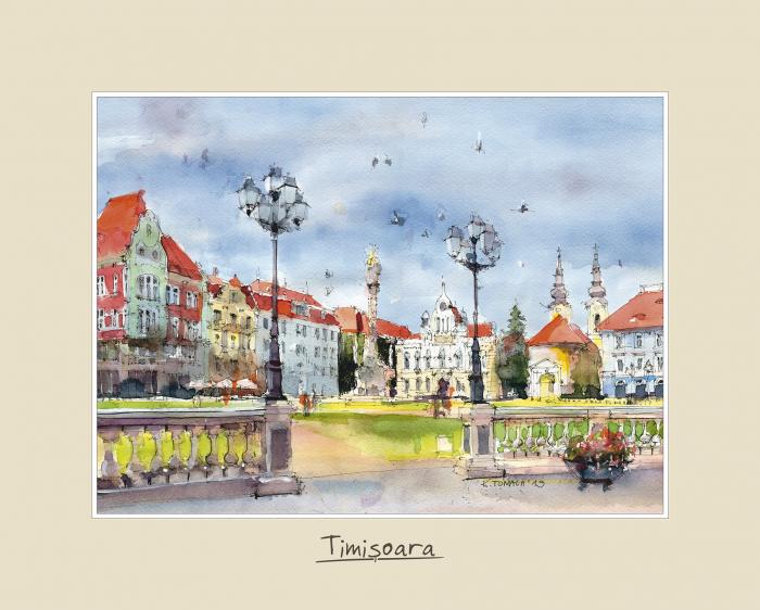 Tablou mare Timisoara 1 0
