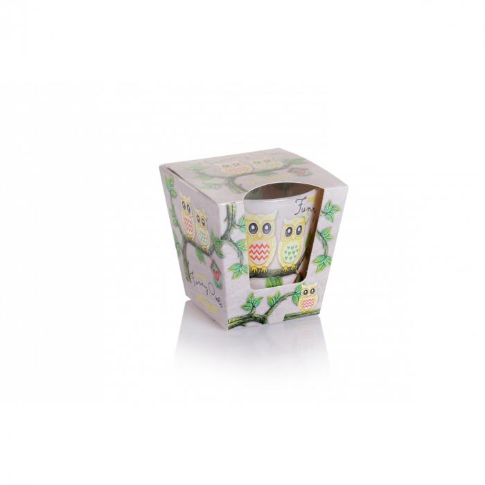 Lumanare aromatica - Tutti Frutti 0
