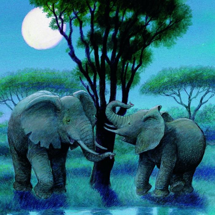 Vino cu mine, elefantelule! [2]
