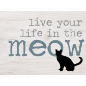 Live you life in the meow [1]