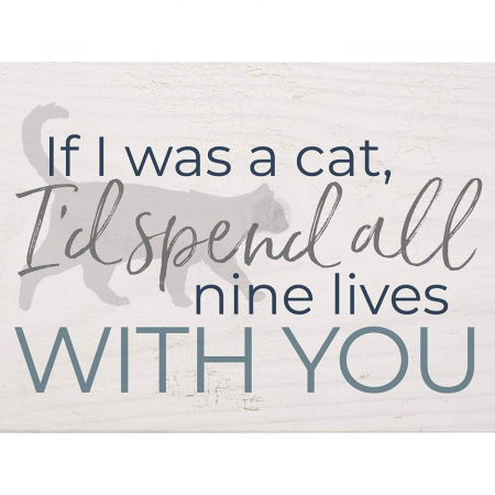 If I was a cat I'd spend all nine lives [0]