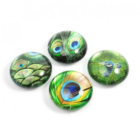 Set 4 magneti Peacock0