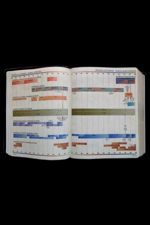 Biblia internationala de studiu inductiv5