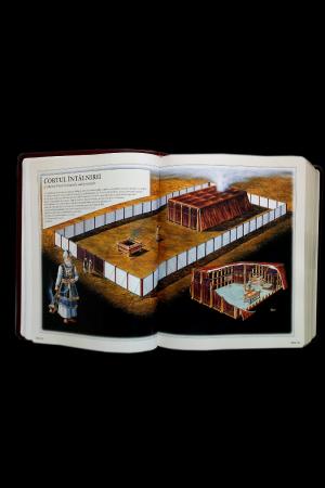 Biblia internationala de studiu inductiv9