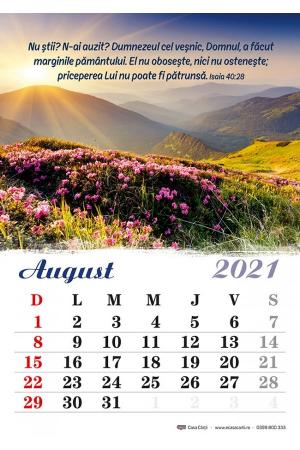 Calendar de perete 2021 - format A43