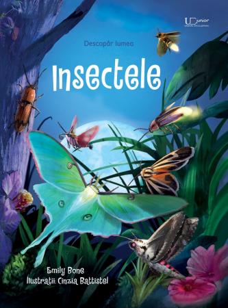 Insectele (Usborne) [0]