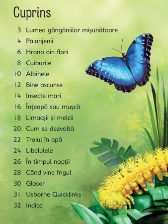 Insectele (Usborne) [1]