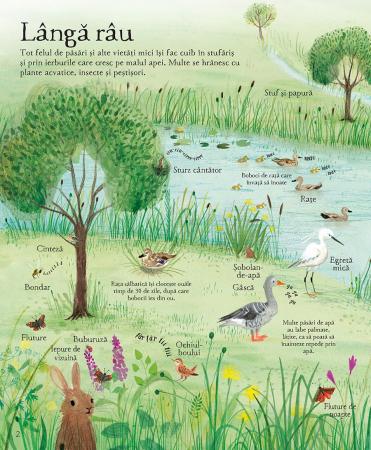 Marea carte ilustrata a naturii (Usborne) [3]
