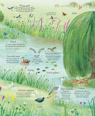Marea carte ilustrata a naturii (Usborne) [4]