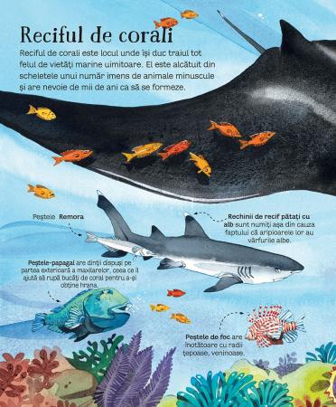 Marea carte a animalelor din mari si oceane (Usborne) [2]