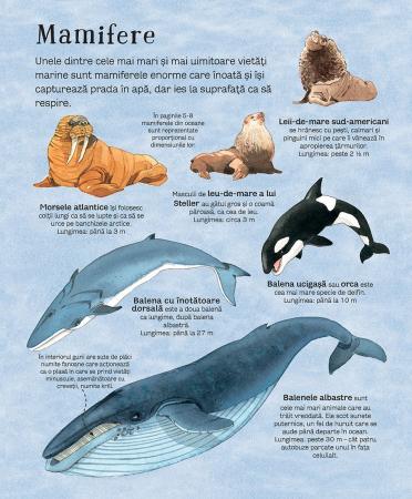 Marea carte a animalelor din mari si oceane (Usborne) [4]