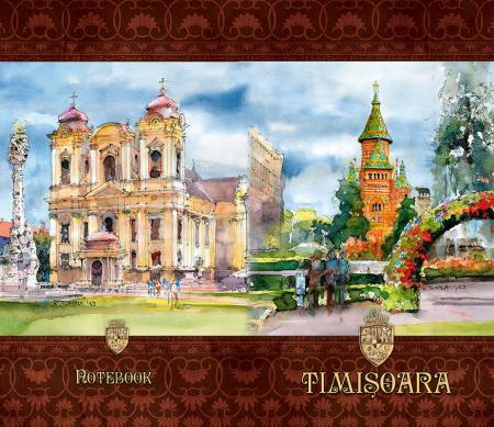 JURNAL 11N-S (A6) TIMISOARA3