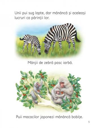 Pui de animale (Usborne) [4]