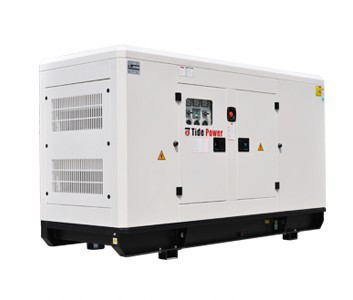 Generator Tide Power TQ800C cu automatizare [0]