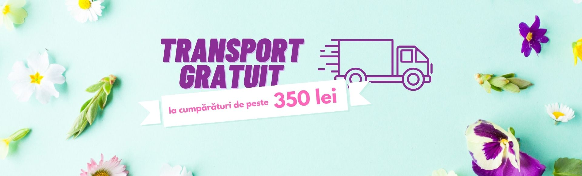 noutati transport