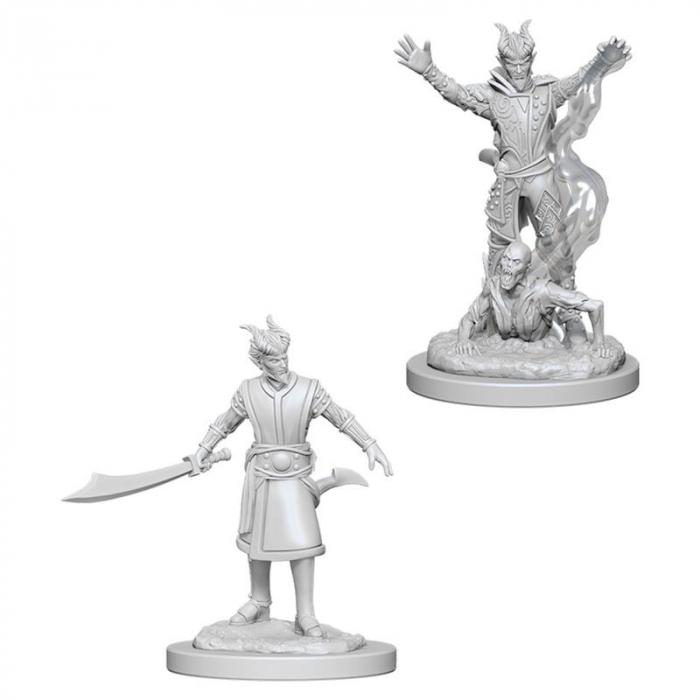 D&D Nolzur's Marvelous Miniatures - Male Tiefling Warlock 0