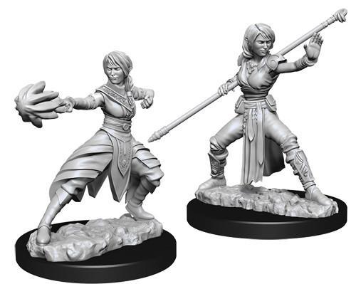 Female Half-Elf Monk - Nolzur's Marvelous Unpainted Miniatures 0